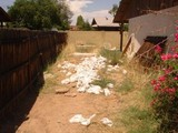 Bags Of Human Crap On Side of House